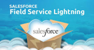 Salesforce lightening service providers at low cost