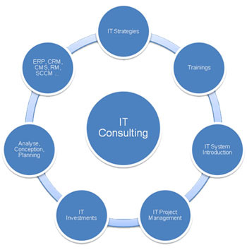consulting and advisory service providers