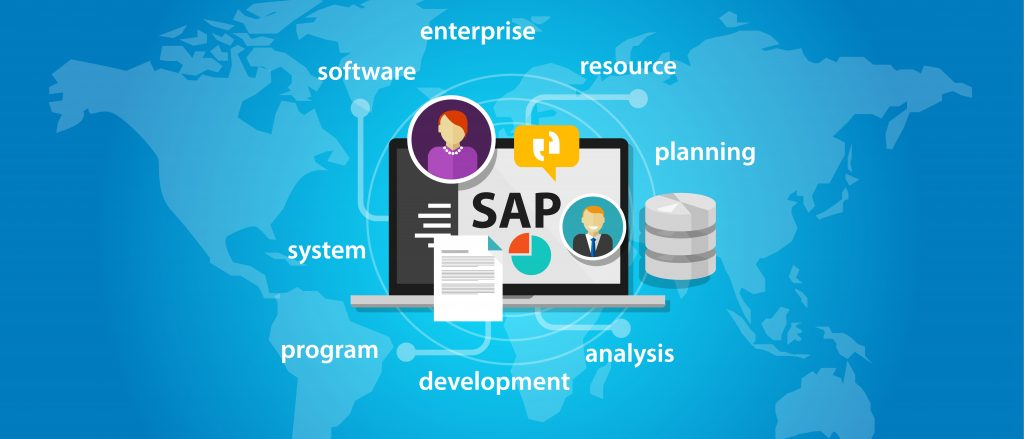 SAP Services at your cost