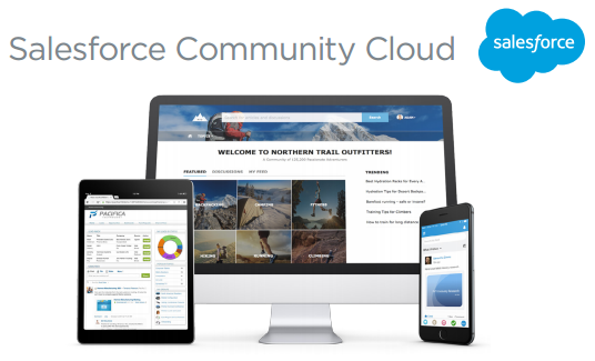 cost effective salesforce community services