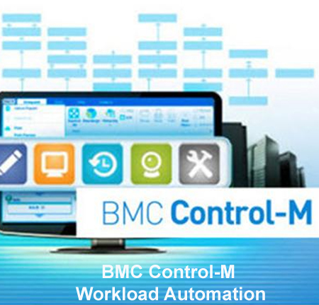 Control-m service providers at low cost