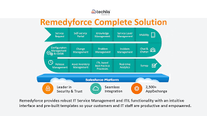 remedyforce services at low cost