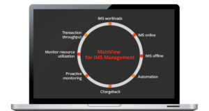 MainView Services Providers