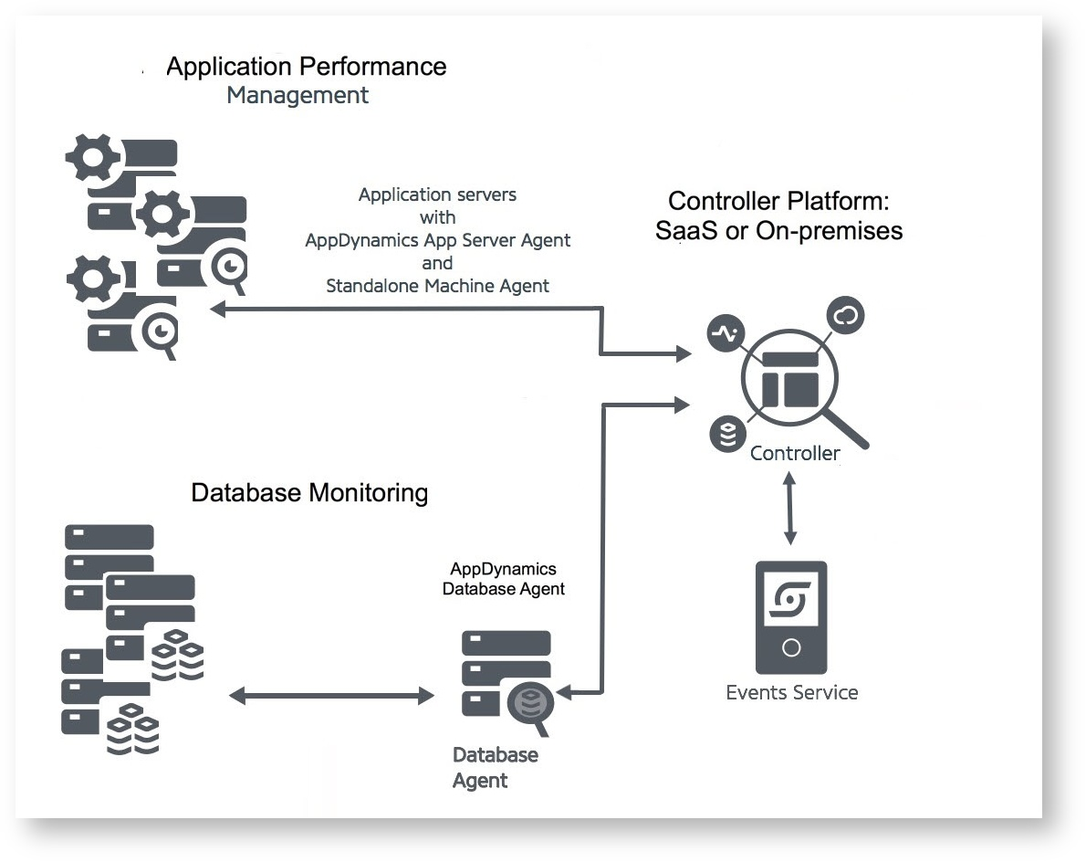 Costeffective AppDynamics Services