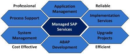 SAP Managed Service Providers